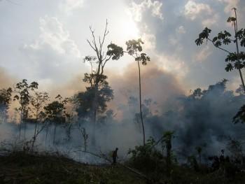 Kahkha Creeks brannslokkingsmannskap, Mathilde