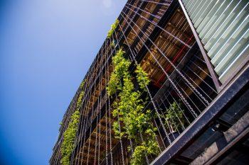 Bygning med grønne planter