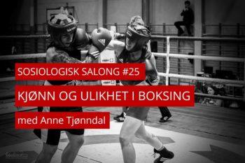 To boksere i aksjon